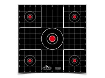 Birchwood Casey Dirty Bird 12 inch Sight-In Target, 12 ct