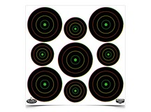 Birchwood Casey Dirty Bird Targets, 2 inch & 3 inch Targets, 180ct