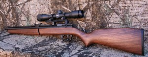 Classic Sheridan .20 cal Blue Streak with Leapers 4x32AO scope
