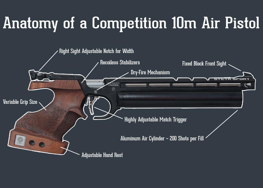 10 meter air rifle target pdf