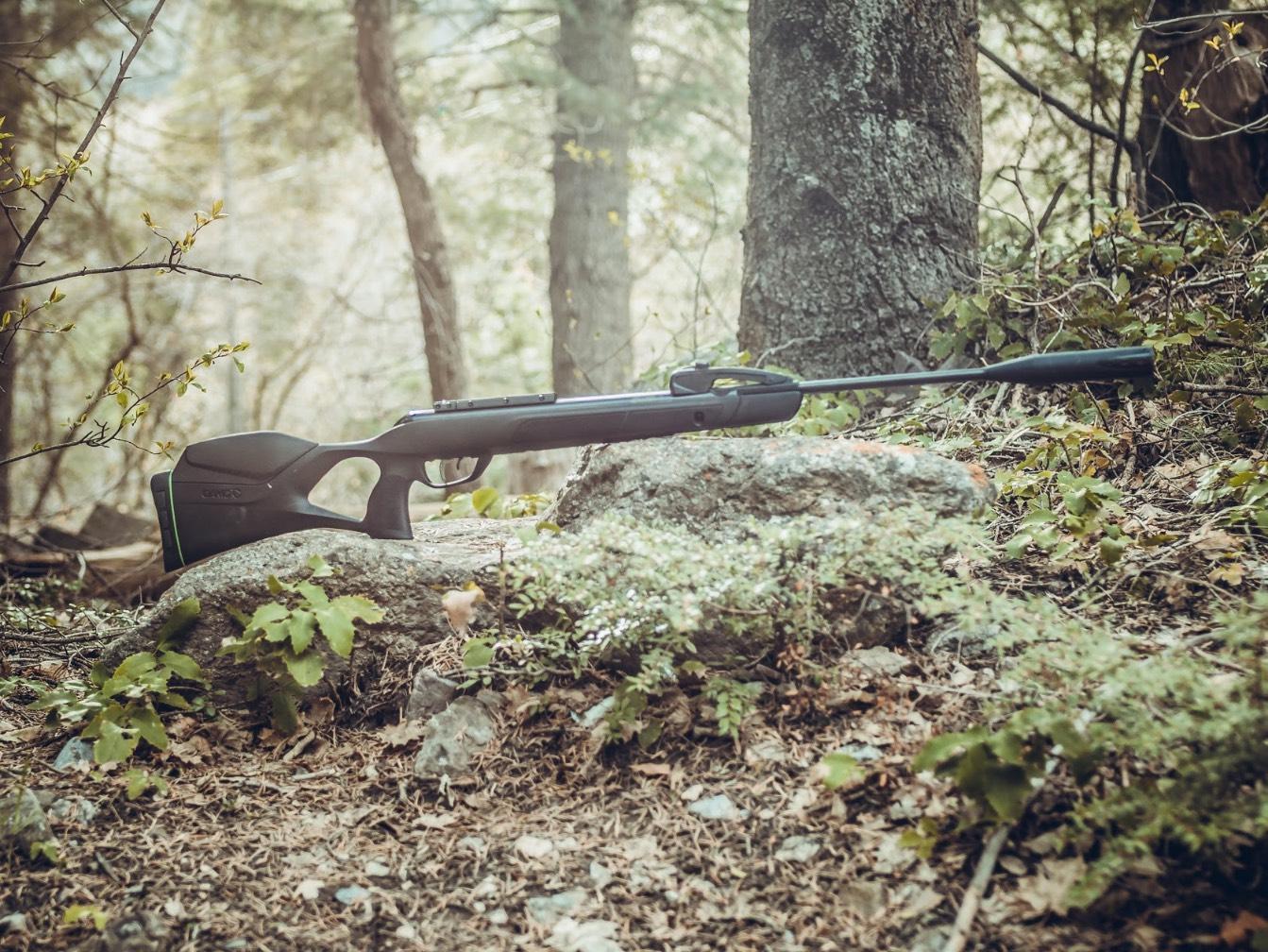 Is an Air Rifle a Pellet Gun